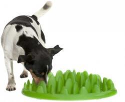 intelligens legetøj til hunde