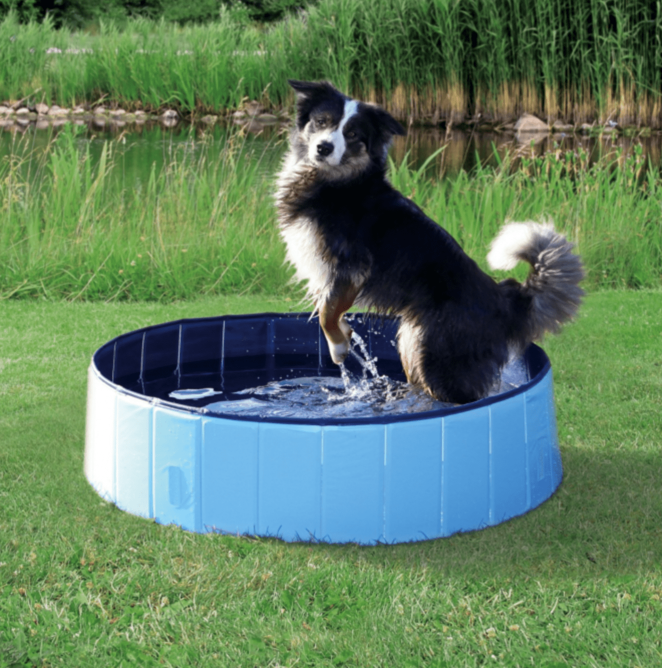 Badebassin soppebassin til hunde k b smart badebassin for Piscine pour grand chien