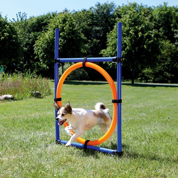 Image of   Agility ring