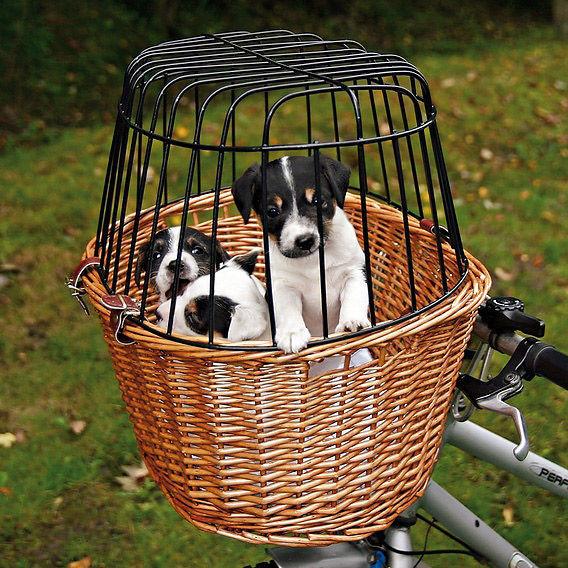 Cykelkurv til små hunde og katte i flet thumbnail