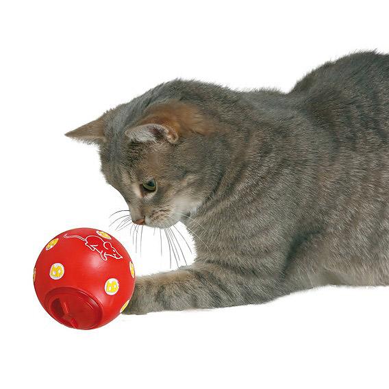 Snack bold til katte thumbnail