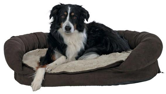 Memory hundeseng med ekstra lækkert plys - køb Memory hundeseng med ekstra lækkert plys ...